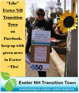 Exeter NH Transition Town 2015 like us