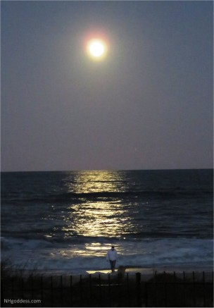 full-moon-st-augustine-fl